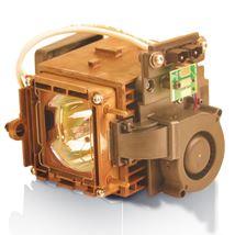 Image de Infocus Lampe de rechange pour vidéoprojecteur TD61, SP61 ... (SP-LAMP-022)