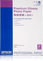 Image de Epson Premium Glossy Photo Paper (C13S042091)